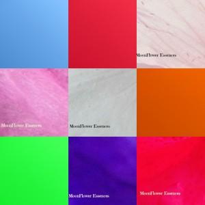 Multicolour light